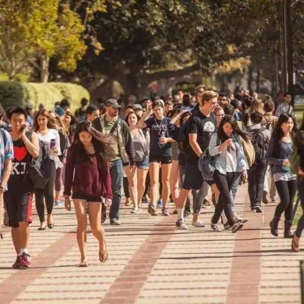 一位中国妈妈走访130多名留学生,真实记录海外留学光环背后……
