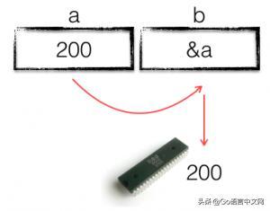 800 字彻底理解 Go 指针