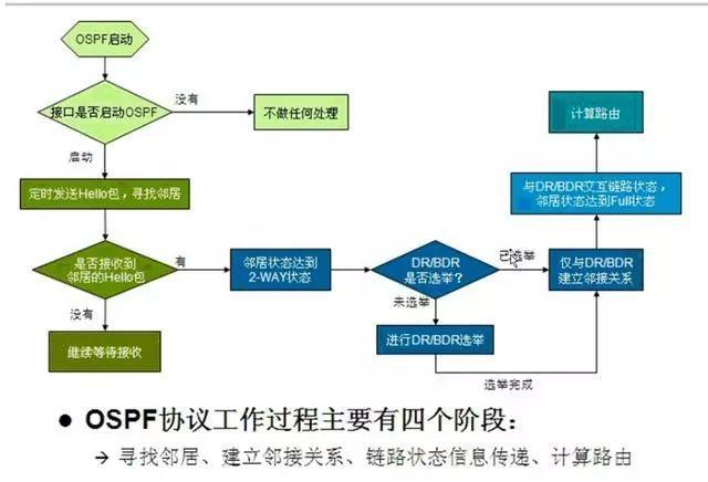 「案例」OSPF路由动态协议及配置