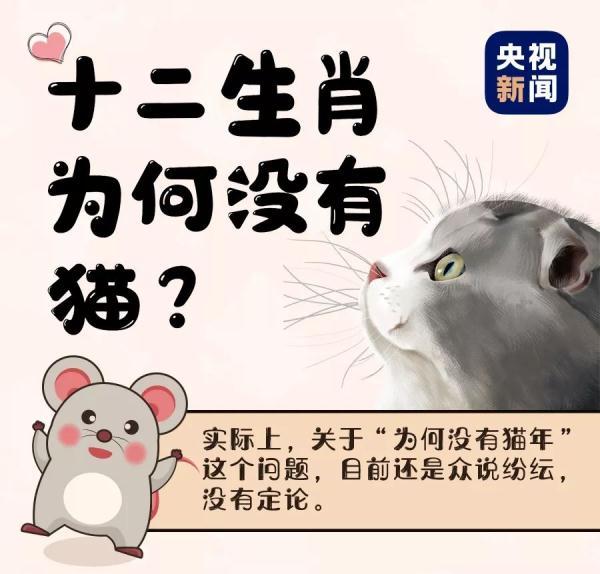 十二生肖为何没有猫?面对孩子的提问,家长可以这样回答 | 趣闻