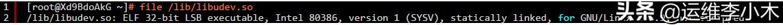 linux系统被入侵排查顽固病毒 与病毒源码
