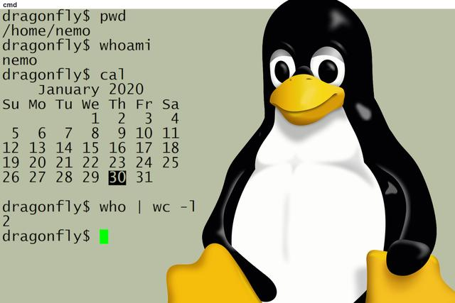 Linux 命令行简介