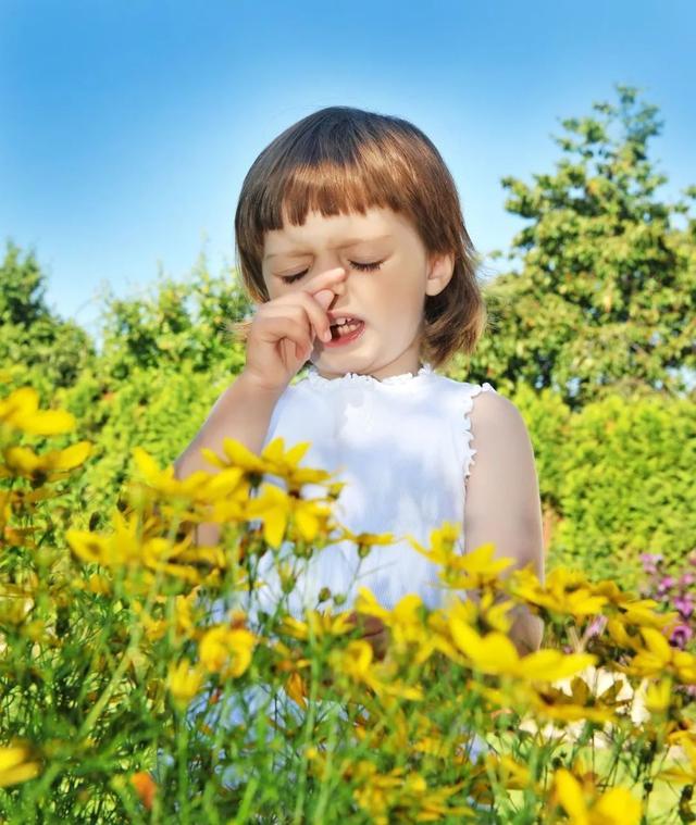 鼻炎用药开始抢占维C、酒精、消毒液的风头——过敏季又到了,这样对付你的鼻炎