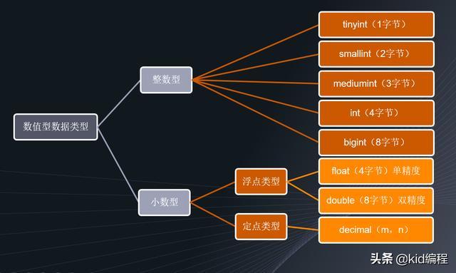 MySQL数据库教程-快速理解数据类型
