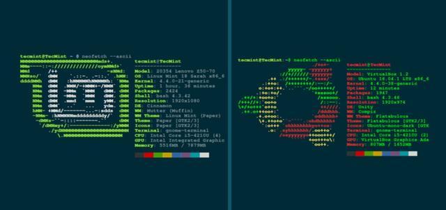 使用 Bash 工具截屏 Linux 系统配置