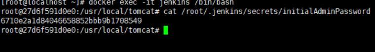 Docker安装Jenkins详解