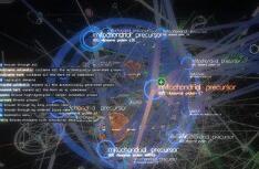 UI组件库-Message插件