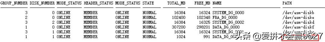 Oracle数据盘扩展-ASM