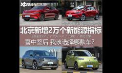 喜中签新能源新增指标后 我该买哪款车