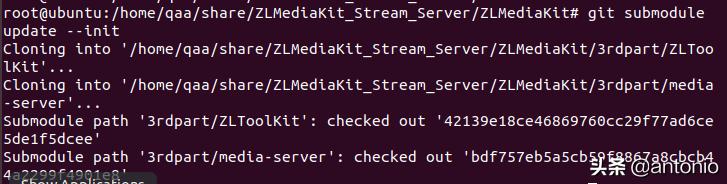 手把手搭建RTSP流媒体服务器