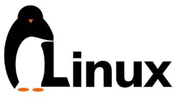 Linux常用命令大全!先码再看