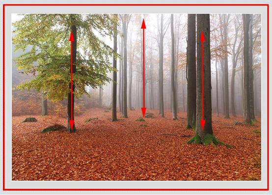 摄影构图的核心技法,用画面中的线条,让作品具有深度感和趣味性