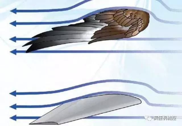 飞机机翼那么薄,为什么能承受几十吨重量?
