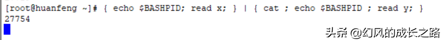Linux操作系统一切皆文件