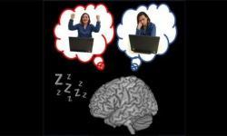 睡眠中的大脑在做什么?竟和你打赢游戏有